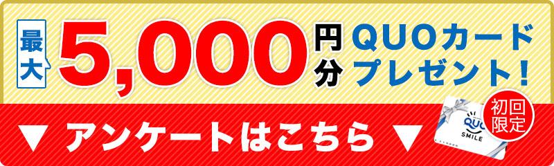 最大5,000円分QUOカードプレゼント アンケートはこちら